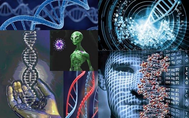 اجداد ما جزء میکروب ها بوده اند