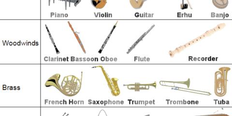 انتخاب یک ساز موسیقی- انواع مختلف ساز های موسیقایی
