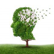 بیماری آلزایمر و عوامل سبک زندگی