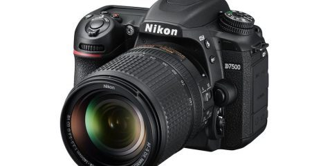 دوربین نیکون D7500 (Nikon)