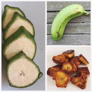 غذاهای پره بیوتیک