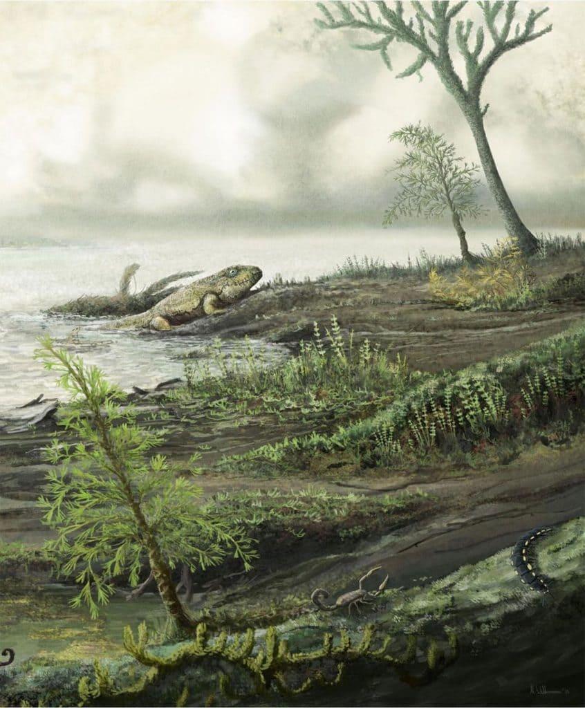 باکتری انتروکوکوس : سوپرباگی 450 میلیون ساله