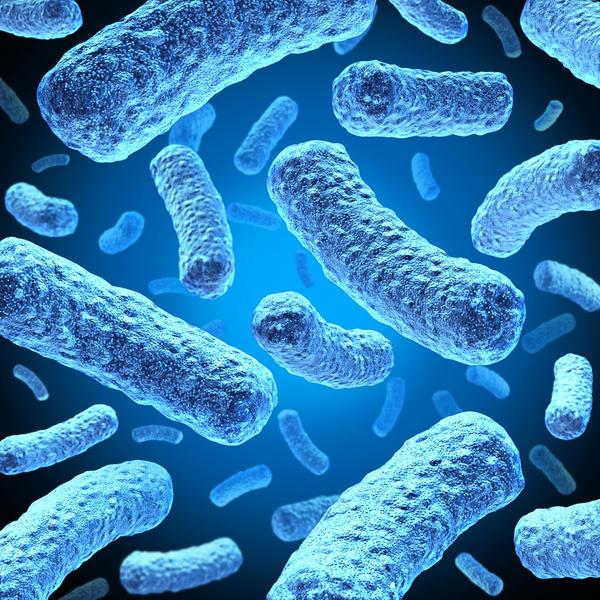 بیماری مننژیت باکتریایی