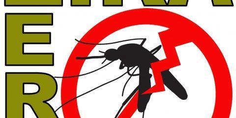 ابتلای به ویروس زیکا