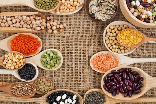 لوبیا پروتئینهای گیاهی