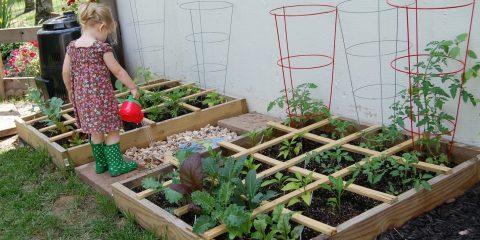 باغبانی فوت مربع