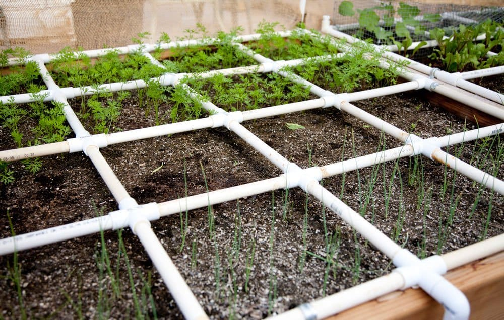 شبکه بندی بستر باغبانی فوت مربع