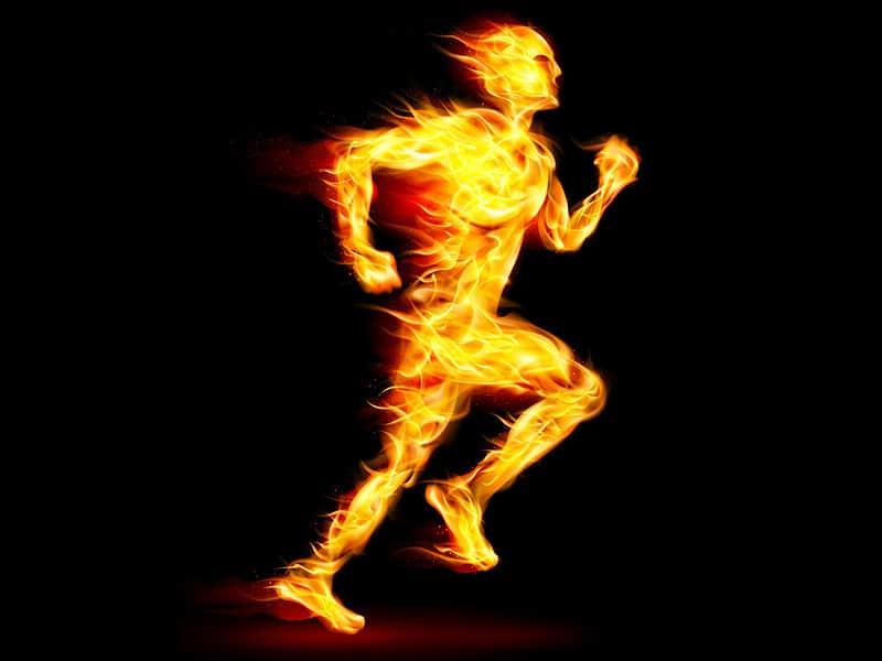 تحرک و متابولیسم بدن