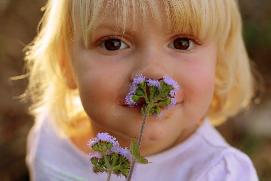 رازهایی درباره عملکرد حس بویایی و عطرها از زبان کارشناس خبره عطر