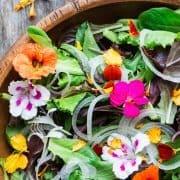 سالاد گلهای خوراکی بهاری
