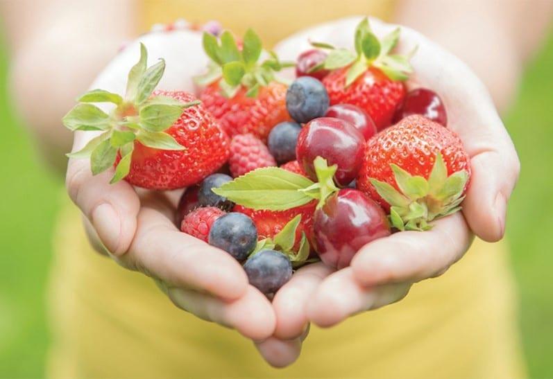 بلوبری غذاهای مغذی