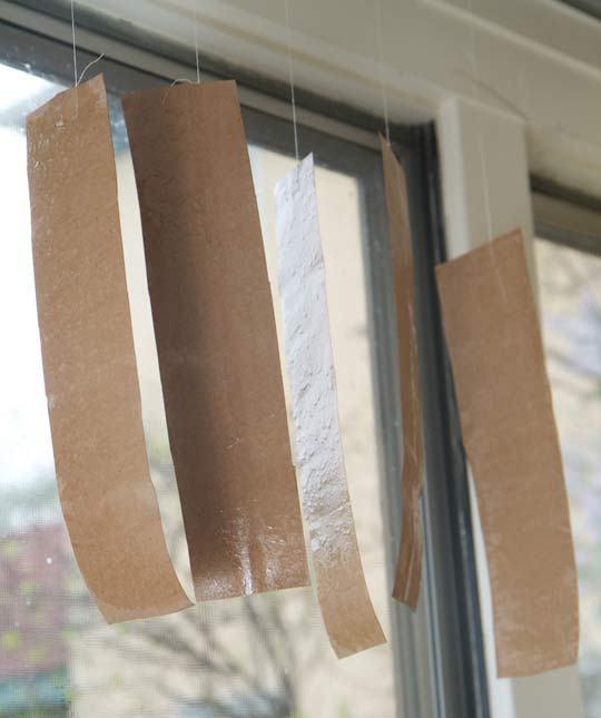 آویزان کردن تله های چسبی مگس