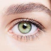 سلامت چشم و میوه آووکادو