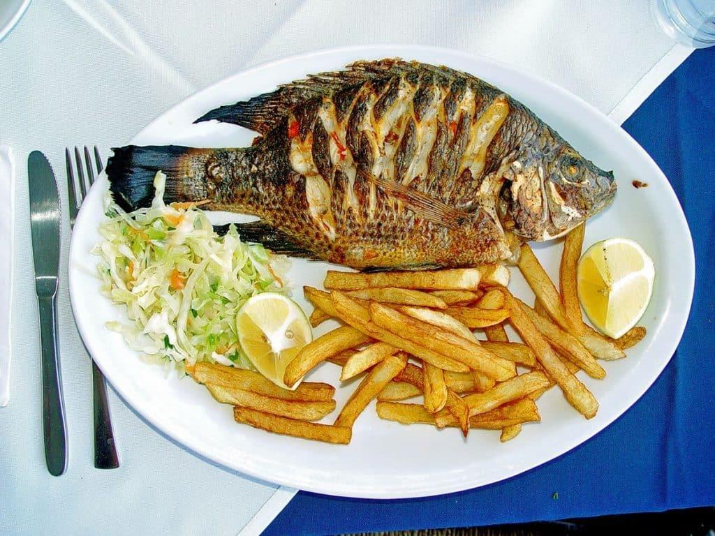 ماهی از بهترین غذاهای مغذی
