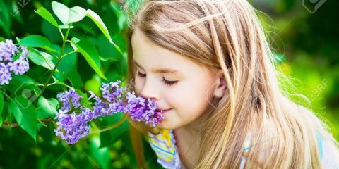 شادی با بوی خوش گلها