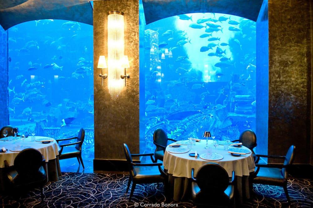 هتل نخل آتلانتیس دبی