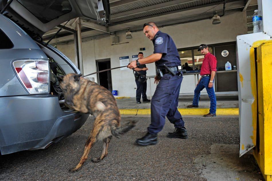 سگ های ردیاب پلیس