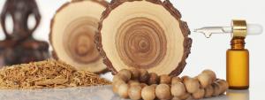 عنبر و چوب صندل دو عنصر طبیعی و پرکاربرد در ساخت عطر
