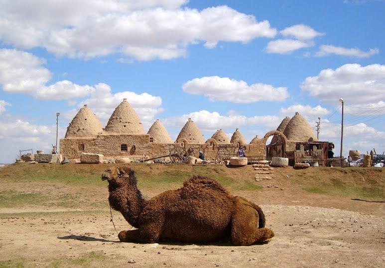 اگر به دیدن مکانهای تاریخی علاقهمند هستید، پیشنهاد میکنیم این منطقه را از دست ندهید.