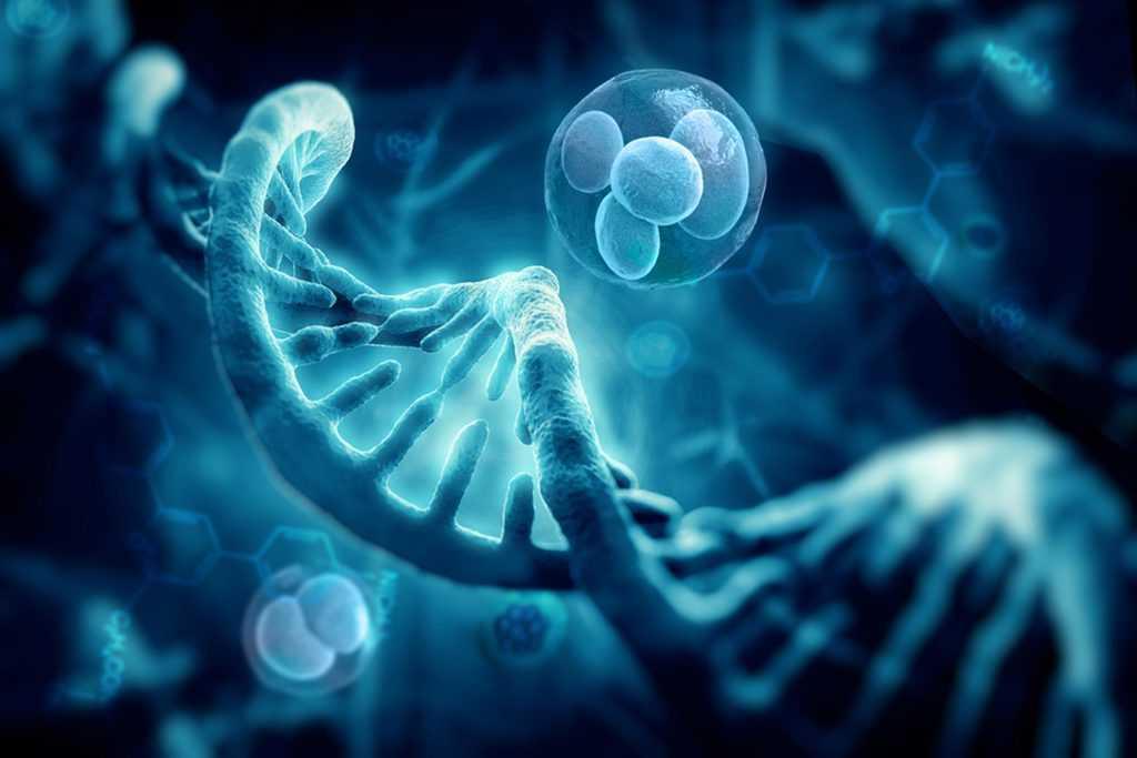 ژنتیک و اثر بر چربی زیاد پوست
