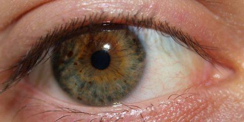 خواص گرمک در بهبود بینایی