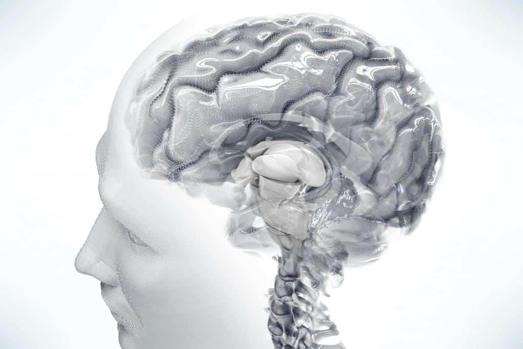 ساختار بندی مجدد ذهن برای حذف فیلترهای ذهنی