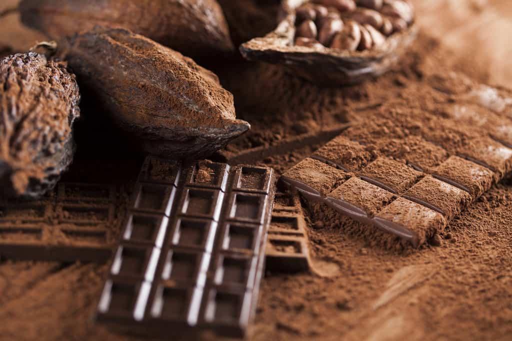 فواید سلامتی شکلات از قلب و مغز تا پوست و کاهش وزن