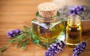 مهمترین و پرکاربردترین گیاهان معطر در ساخت عطر را بشناسید