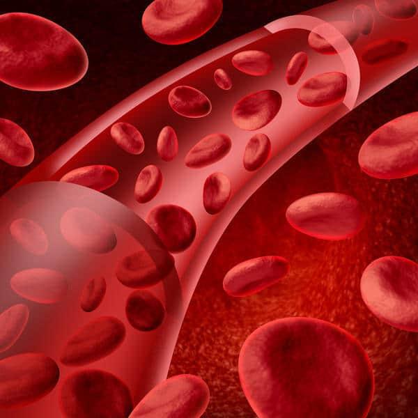 لخته شدن خون و ۸ گروه از افراد که احتمال بیشتری برای ابتلای به این وضعیت دارند