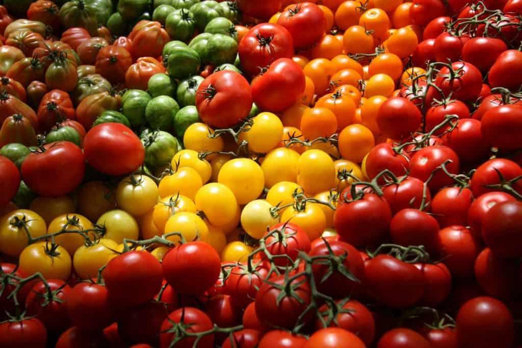 معرفی مواد مغذی گوجه فرنگی