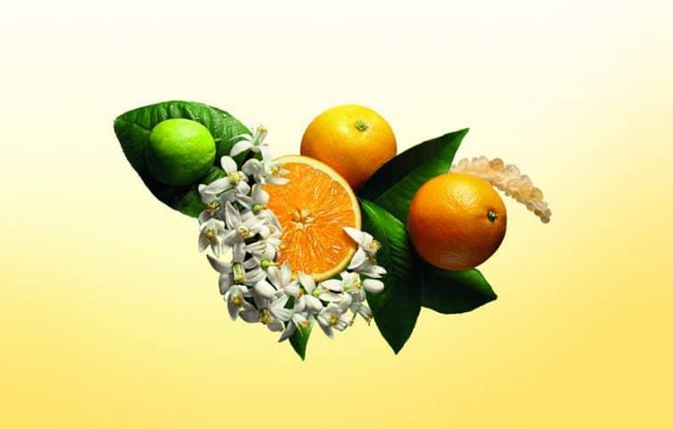 عطر پرتقال و ترنج دو رایحه دلپذیر مرکبات در دنیای عطرها