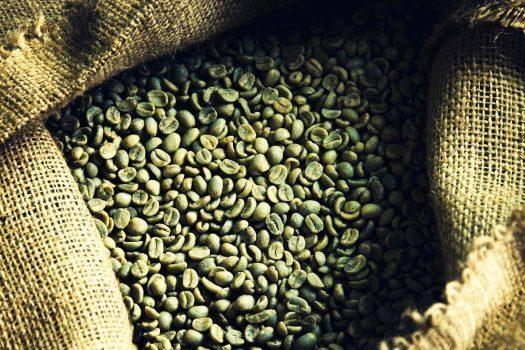 قهوه سبز و ایمن بودن آن