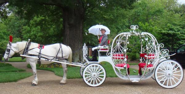 ماشین های عروسی محبوب