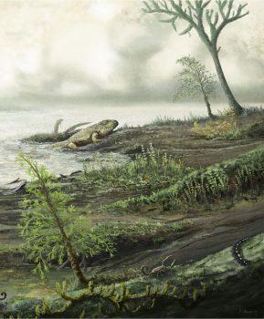 انتروکوکوس : چطور یک باکتری ۴۵۰ میلیون ساله، تبدیل به یک ابرمیکروب شد؟