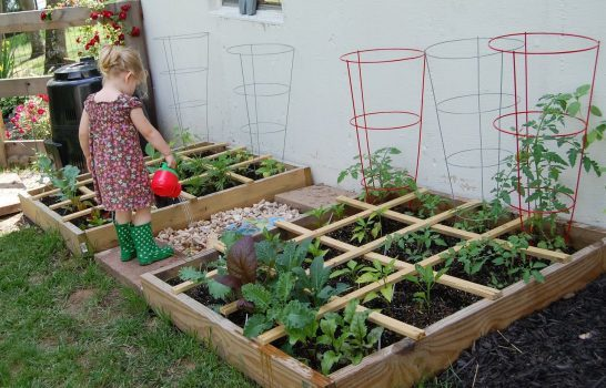 باغبانی فوت مربع ، روشی عالی برای باغبانی در فضاهای کوچک
