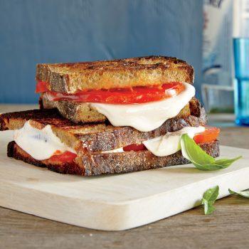 ساندویچ های گیاهی و ۸ نوع از آن که شما عاشق آن خواهید شد
