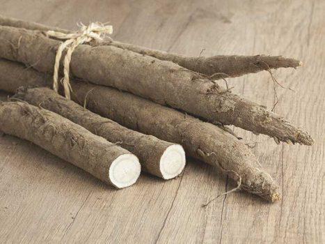طرز تهیه ترشی ریشه گیاه بابا آدم و طبخ کین پیرای بابا آدم
