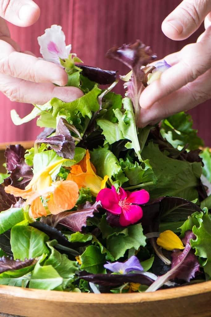 سالاد بهاری با گلهای خوردنی