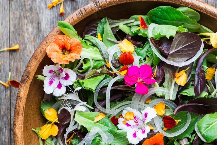 سالاد گلهای خوراکی ؛ ارمغان زیبای طبیعت روی میز غذای شما