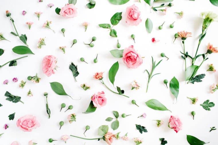 بوی خوش گل