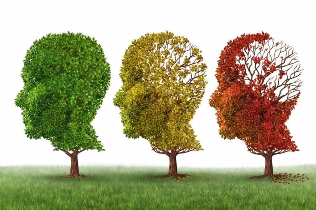 اثر کورکومین در مبارزه با بیماری آلزایمر