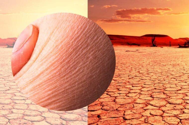 محصولات مراقبت از پوست در هوای خشک و گرم