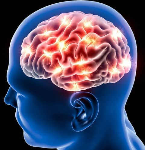 کاهش خطر سکته مغزی با خواص کرفس