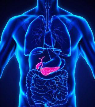 سرطان پانکراس: تعریف بیماری، علل ابتلا، تشخیص، پیشگیری و درمان