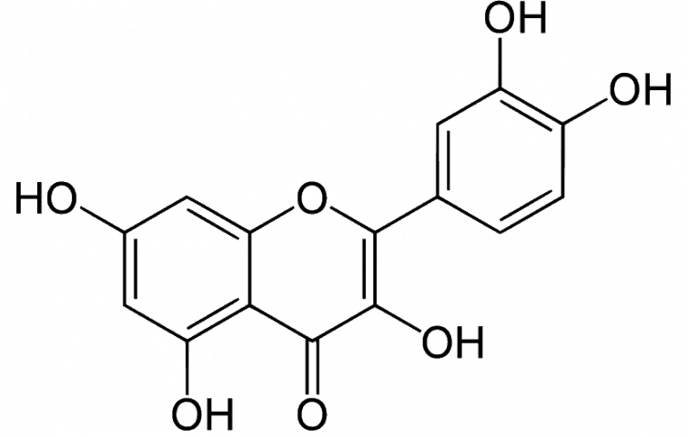 کوئرستین و معرفی ۷ مورد از مزایای شگفتانگیز این ماده آنتی اکسیدان