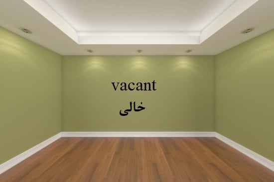 Vacant = خالی/ مبهوت