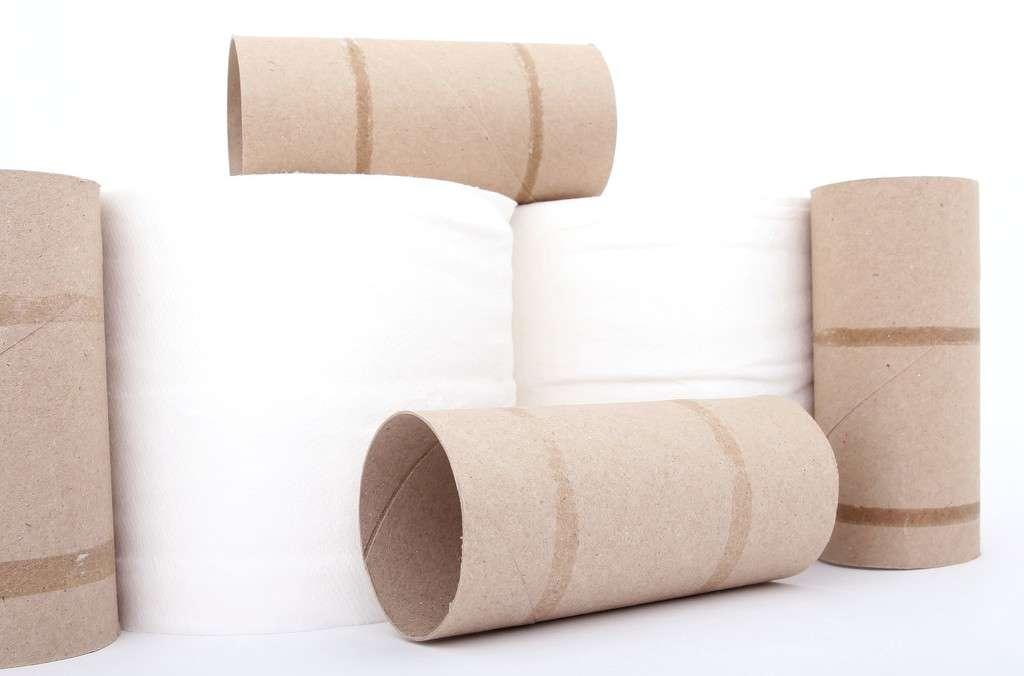 آثار هنری ساده و زیبا با استفاده از لوله دستمال کاغذی