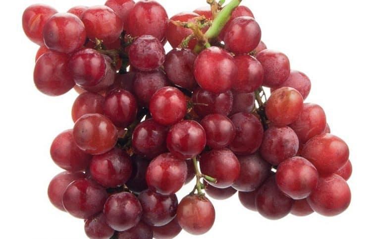 انگور قرمز و ۶ مورد از بهترین فواید مصرف این ماده غذایی