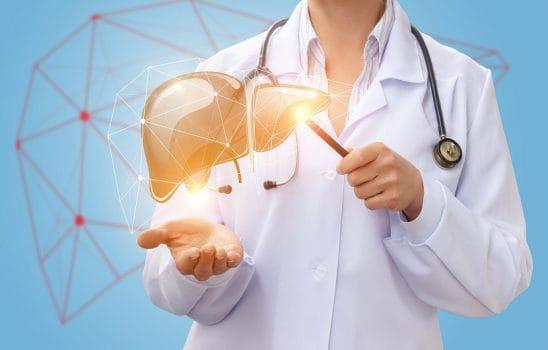حفظ سلامت کبد و پیشگیری از بیماریهای کبدی با راهکارهای تغذیهای و مراقبتی