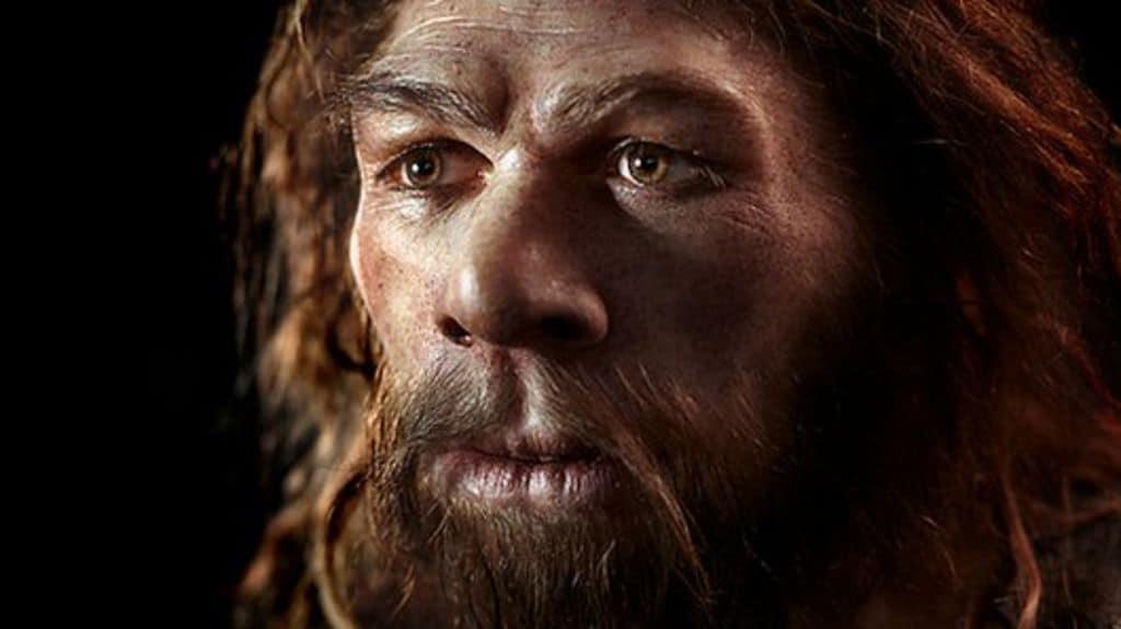 کتاب انسان خردمند تاریخ مختصر بشر